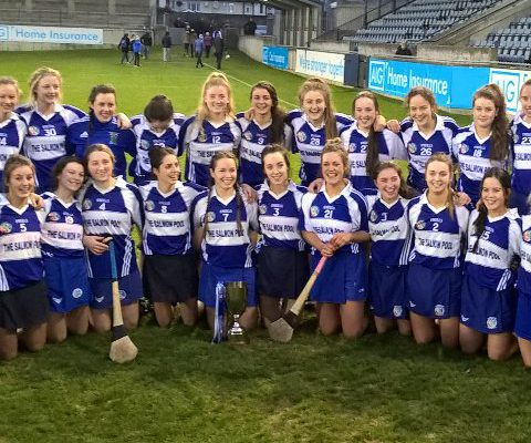 Camogie Thomastown Vs Sarsfield
